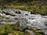 Icy Waters of Maroon Creek Flow Between Moss Covered Rocks Photographic Print by Charles Kogod