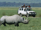 Tourists View a Rhinoceros from a Safari Jeep Photographic Print by Richard Nowitz
