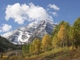 The Majestic Maroon Bells are Surrounded by Aspen and Evergreen Trees Photographic Print by Charles Kogod