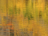 Autumn Colors are Reflected on the Surface of Maroon Lake Photographic Print by Charles Kogod