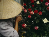 A Woman in a Conical Hat Prunes Roses to Sell off Her Bike Photographic Print