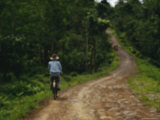 A Man on a Bicycle Pedals Down a Dirt Road Through a Rural Plantation Photographic Print