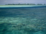 Crystal Clear Blue Waters over a Polynesian Reef Photographic Print by Tim Laman