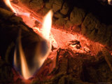 A Close View of Burning Logs in a Campfire Photographic Print by Taylor S. Kennedy