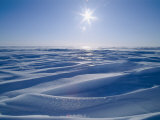 The Sun Shines Upon a Sea of Snow and Ice Photographic Print by Norbert Rosing