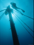 A Diver Swims Near the Mast of a Shipwreck Near Bermuda Photographic Print by Brian J. Skerry