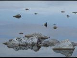 Rocks Reflected in the Water at Mono Lake Photographic Print by Michael Nichols
