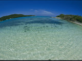 A Fisheye View of Tobago Cays Photographic Print by Todd Gipstein