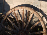 An Old Wagon Wheel Sits Rotting in the Afternoon Sun Photographic Print by Taylor S. Kennedy