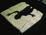 The Shadow of a Child with a Raised Hand Falls onto a Stone Floor Fotografisk tryk af Paul Chesley