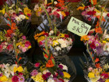 Bundles of Flowers for Sale by a Street Vendor in New York Photographic Print by Todd Gipstein
