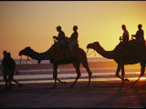 People Riding Camels on a Beach Photographic Print by Nicole Duplaix