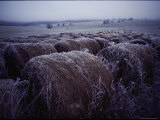 Bales of Hay Covered with Morning Frost Photographic Print by Kenneth Garrett
