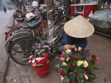 A Flower Vendor Sitting on a Sidewalk Next to a Row of Parked Bicycles Photographie par Steve Raymer