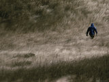 Hiker in the Tall Grass Photographic Print by Sam Kittner
