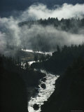The River Cuts Silver Curves Through Dark Pines and Fog Photographic Print