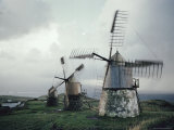View of Windmills on Faial Photographic Print by Robert Sisson