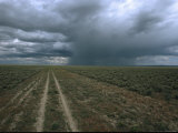 A Dirt Road Through Sagebrush Leads Towards a Distant Rain Storm Photographic Print by Melissa Farlow
