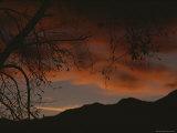 Twilight View, Grand Teton National Park, Wyoming Photographic Print by Raymond Gehman