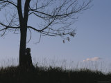A Young Girl Leans against a Leaf-Less Tree on a Hill Photographic Print by Roy Gumpel
