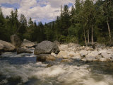 White Water Rapids Roll over Rocks in a River Running Through Woods Photographic Print by Raymond Gehman