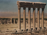 The Columns of the Jupiter Temple Photographic Print by W. Robert Moore