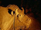 Detail of a Bison Shaped from Clay Approximately 14,000 Years Ago Photographic Print by Sisse Brimberg