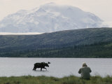 A Photographer Takes a Picture of a Bull Moose Wading in Warden Lake Photographic Print