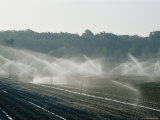 Field Irrigation, Provence Region, France Photographic Print by Nicole Duplaix