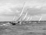 Sailboats Race Each Other off the Coast of England Near Cowes Valokuvavedos