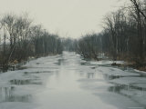 Looking up River at Bare Trees and Melting Ice, Close to Spring Photographic Print by Stephen St. John