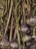 Shallots at a Market in Provence Fotografisk tryk af Nicole Duplaix