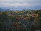 An Elevated View of Autumn Foliage and Distant Mountains Photographic Print by Sam Kittner