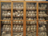 Human Skulls and Femurs Fill a Display Case at Nea Moni Monastery Lámina fotográfica por Soriano, Tino
