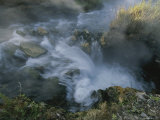 Boiling River, Mammoth Hot Springs Photographic Print by Norbert Rosing