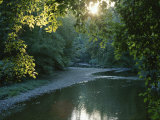A Sunset View of Rock Creek in Rock Creek Park Photographic Print by Taylor S. Kennedy