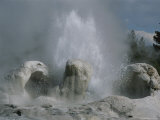 Grotto Geyser, Yellowstone National Park Photographic Print by Norbert Rosing