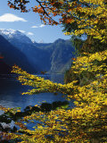Autumn Foliage Scenic with River View, Berchtesgaden National Park Photographic Print by Norbert Rosing