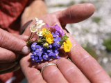 Close View of Mountain Wildflowers Picked in the Karakorum Mountains Photographic Print by Jimmy Chin