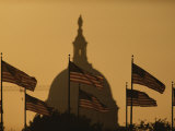 Twilight View of American Flags Flying Near the Capitol Building Photographic Print by Karen Kasmauski