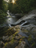 The Waters of Howe Brook Rush over a Rocky Streambed Photographic Print by Phil Schermeister