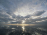 Sun Reflection over Water, Wattenmeer National Park Photographic Print by Norbert Rosing
