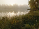 Mist Rises from a Pond Photographic Print by Mattias Klum