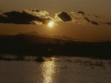 A Setting Sun Leaves a Glowing Reflection on a Marsh Photographic Print by Bates Littlehales