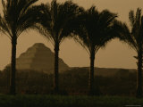 Palm Trees Frame a View of the Step Pyramid of Djoser Photographic Print by Kenneth Garrett