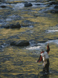 Fisherman in Creek Photographic Print by Dugald Bremner Studio