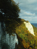 Cliffs with Autumn Foliage, Jasmund National Park, Germany Photographic Print by Norbert Rosing