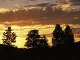 Sunset over Lamar Valley with Silhouetted Evergreens Photographic Print by Raymond Gehman