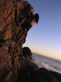 A Female Climber Scales a Rock Near the Pacific Ocean Photographic Print by Joy Tessman