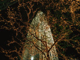 A Brightly-Lit Skyscraper Towers Above a Tree Decorated with Lights Photographic Print by Raul Touzon